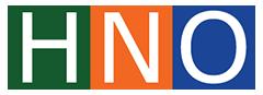 Hà Nam Online Logo 2017